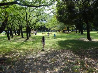 都営白鬚東アパートの公園に駆け出す子供たち