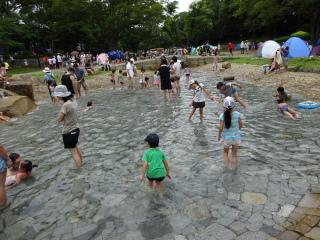 平塚総合公園の水辺