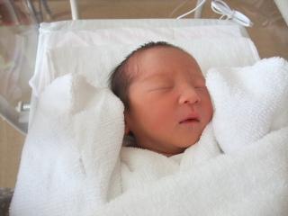 テラ太、誕生