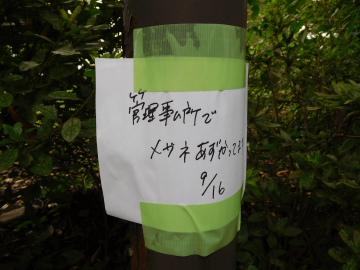 多摩川住宅 落し物