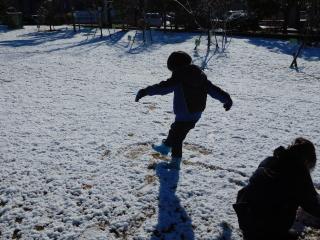 雪で遊ぶテラ太