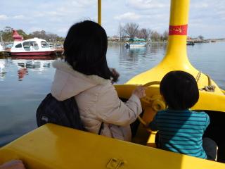 スワンボートに乗る